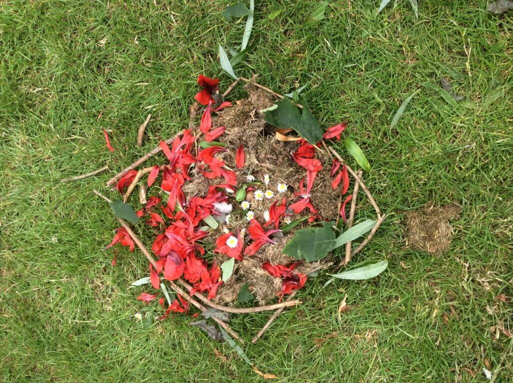 Learning About Andy Goldsworthy