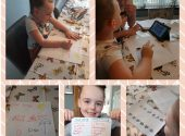 Home Learning Update