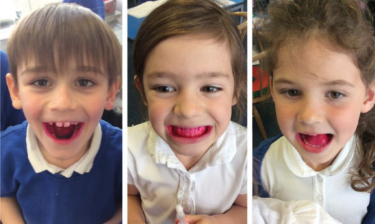 1/2H Learn About Teeth